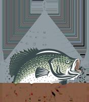 Rock-it Fish Scaler